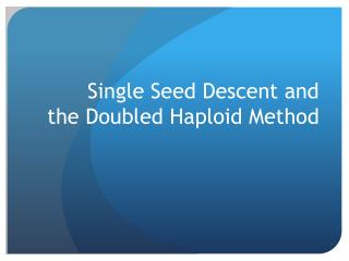 Single Seed Descent and  the Doubled Haploid Method