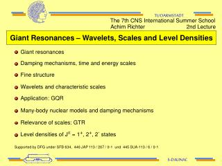 Giant Resonances – Wavelets, Scales and Level Densities