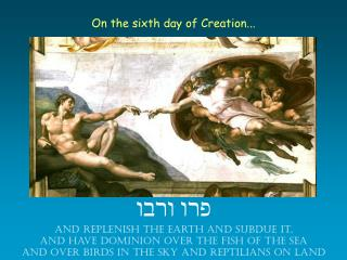 On the sixth day of Creation...