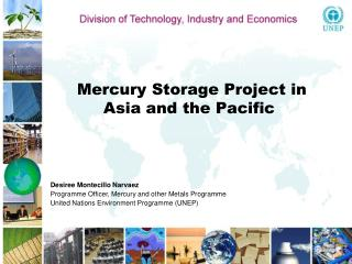 Mercury Storage Project in Asia and the Pacific