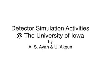 Detector Simulation Activities @ The University of Iowa  by  A. S. Ayan & U. Akgun