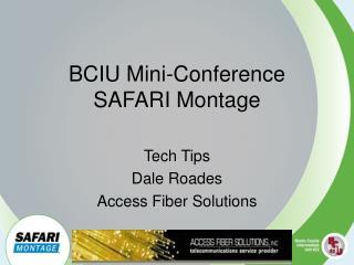 BCIU Mini-Conference SAFARI Montage