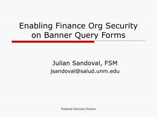 Enabling Finance Org Security on Banner Query Forms