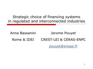 Strategic choice of financing systems  in regulated and interconnected industries