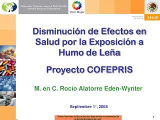 Disminución de Efectos en Salud por la Exposición a Humo de Leña Proyecto COFEPRIS