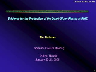Evidence for the Production of the Quark-Gluon Plasma at RHIC