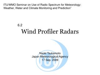 Wind Profiler Radars