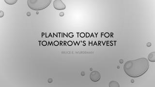 Planting today for tomorrow's harvest