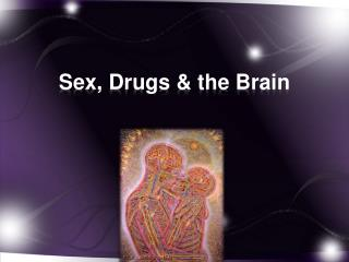 Sex, Drugs & the Brain