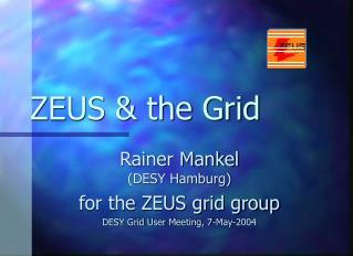 ZEUS & the Grid
