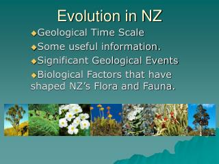 Evolution in NZ