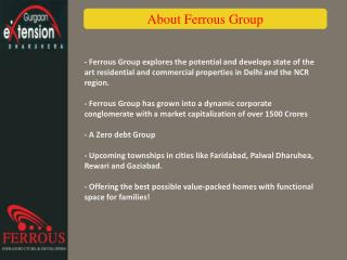 About Ferrous Group