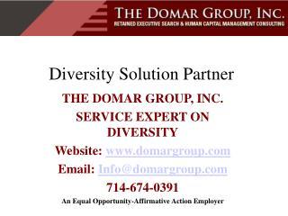 Diversity Solution Partner