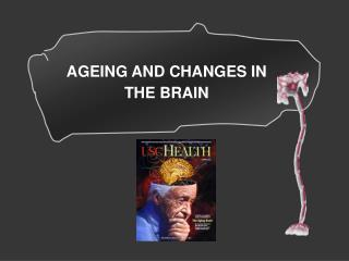 Definition  of Aging Theories and terms Used Body Changes in Aging Brain Changes in Aging