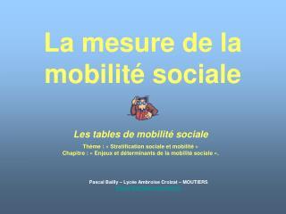 La mesure de la mobilit  sociale