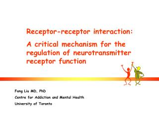Receptor-receptor interaction: