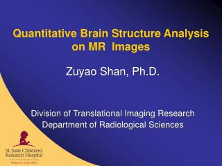 Quantitative Brain Structure Analysis  on MR  Images