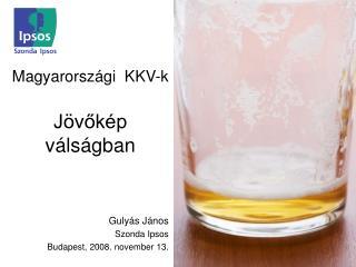Magyarországi  KKV-k  Jövőkép   válságban
