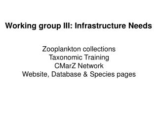 Working group III: Infrastructure Needs
