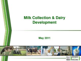 Milk Collection  Dairy Development