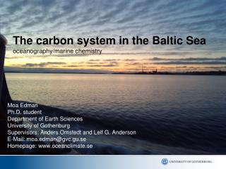 The carbon system in the Baltic Sea         oceanography/marine chemistry