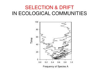 SELECTION & DRIFT IN ECOLOGICAL COMMUNITIES