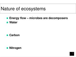 Nature of ecosystems