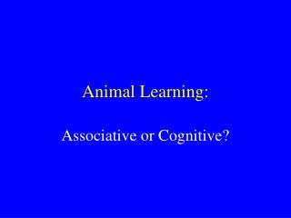 Animal Learning: