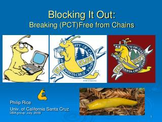 Blocking It Out: Breaking (PCT)Free from Chains