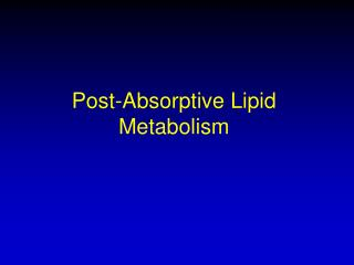 Post-Absorptive Lipid Metabolism
