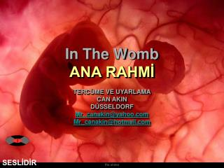In The Womb ANA RAHMİ TERCÜME VE UYARLAMA CAN AKIN DÜSSELDORF  Mr_canakin@yahoo