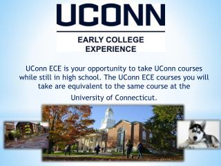Benefits you earn from UConn ECE:
