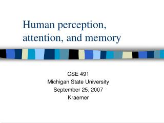 Human perception,  attention, and memory