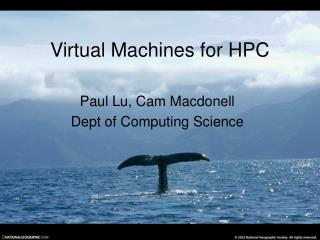 Virtual Machines for HPC