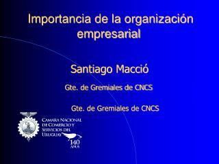 Importancia de la organización empresarial