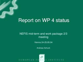 Report on WP 4 status