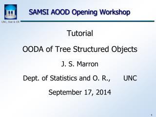 SAMSI AOOD Opening Workshop