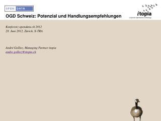OGD Schweiz: Potenzial und Handlungsempfehlungen