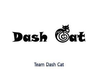 Team Dash Cat