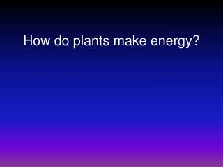 How do plants make energy?