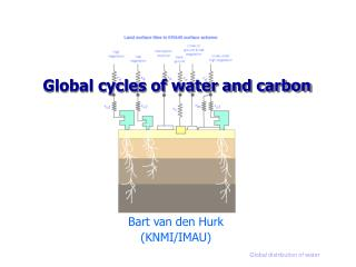 Global cycles of water and carbon