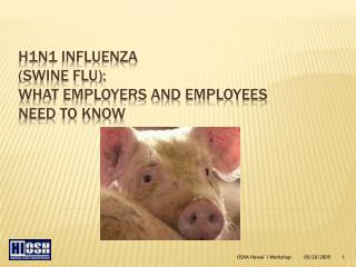 H1N1 INFLUENZA  (Swine Flu): What employers and employees need to know