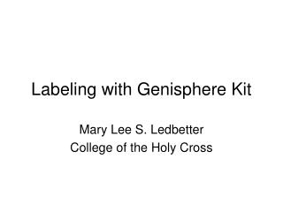 Labeling with Genisphere Kit