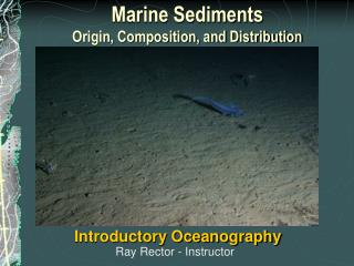 Marine Sediments  Origin, Composition, and Distribution