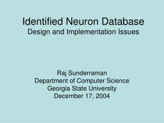 Identified Neuron Database Design and Implementation Issues