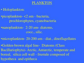 PLANKTON  Holoplankton:  picoplankton- <2  u m - bacteria, prochlorophytes, cyanobacteria