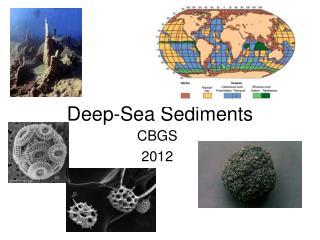 Deep-Sea Sediments
