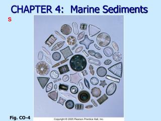 CHAPTER 4:  Marine Sediments
