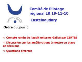 Comit� de Pilotage r�gional LR 19-11-10  Castelnaudary