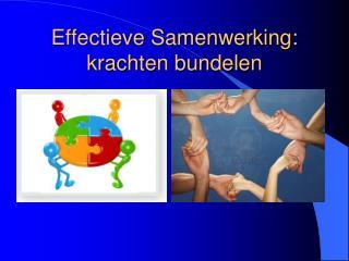 Effectieve Samenwerking: krachten bundelen